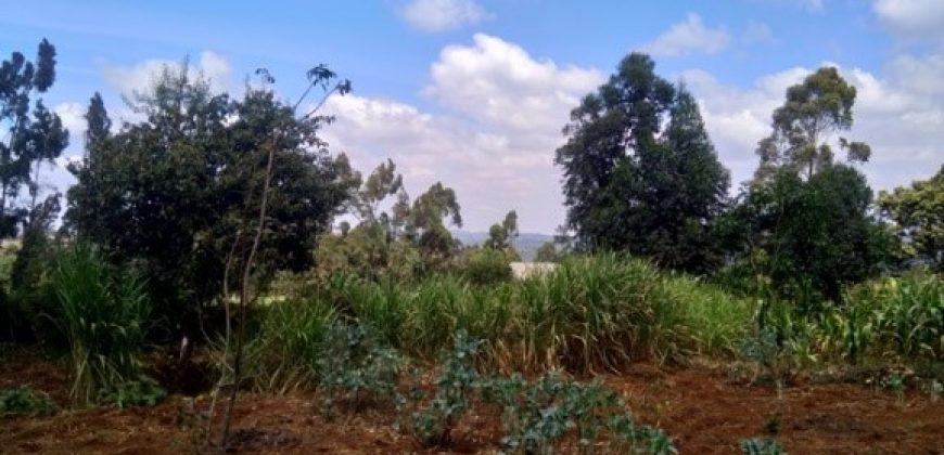 Plot for sale in Rironi, Limuru area